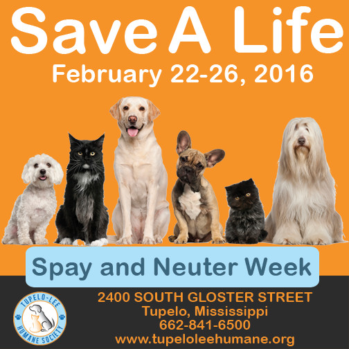 Facebook graphic spay and neuter week